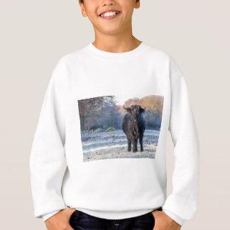 Black scottish highlander cow in winter landscape sweatshirt