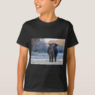 Black scottish highlander cow in winter landscape T-Shirt
