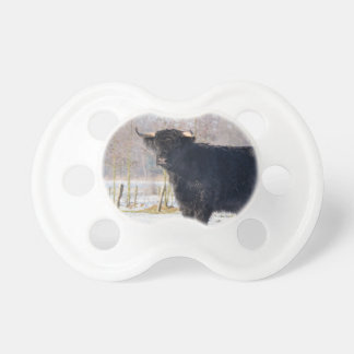 Black scottish highlander cow in winter snow baby pacifiers