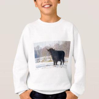 Black scottish highlander cow in winter snow sweatshirt