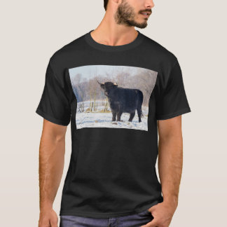 Black scottish highlander cow in winter snow T-Shirt