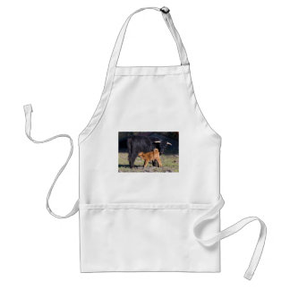 Black Scottish highlander mother cow and young Standard Apron