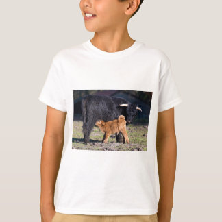 Black Scottish highlander mother cow with drinking T-Shirt