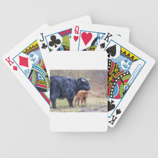 Black Scottish highlander mother cow with newborn Bicycle Playing Cards