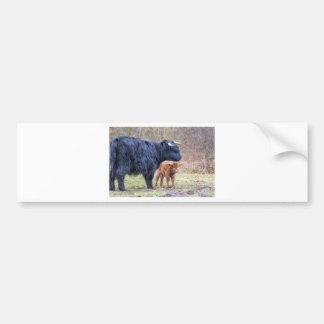 Black Scottish highlander mother cow with newborn Bumper Sticker