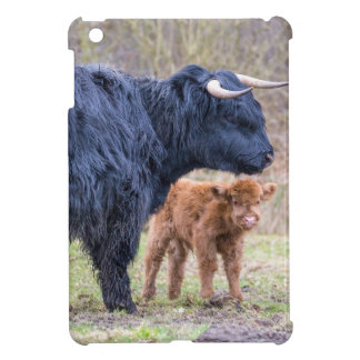 Black Scottish highlander mother cow with newborn Cover For The iPad Mini
