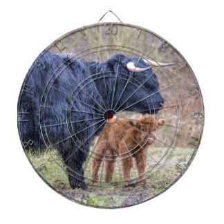 Black Scottish highlander mother cow with newborn Dart Boards