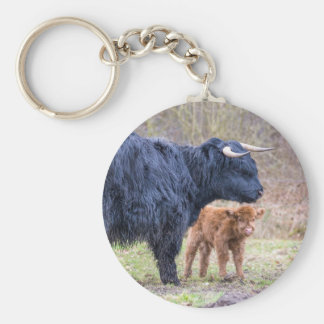 Black Scottish highlander mother cow with newborn Keychain