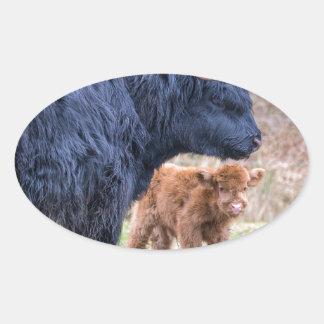 Black Scottish highlander mother cow with newborn Oval Sticker