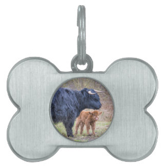 Black Scottish highlander mother cow with newborn Pet Name Tag