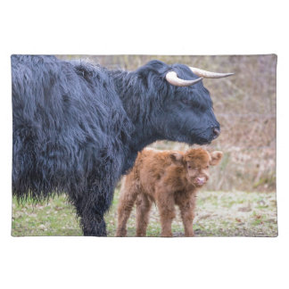 Black Scottish highlander mother cow with newborn Place Mat