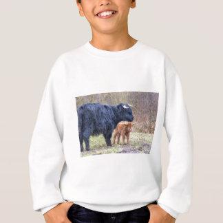 Black Scottish highlander mother cow with newborn Sweatshirt