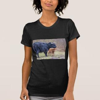 Black Scottish highlander mother cow with newborn T-Shirt