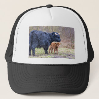 Black Scottish highlander mother cow with newborn Trucker Hat
