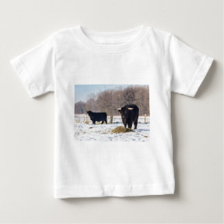 Black scottish highlanders in winter snow baby T-Shirt