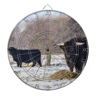 Black scottish highlanders in winter snow dartboard