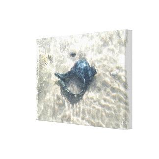 Black Seashell Canvas Print