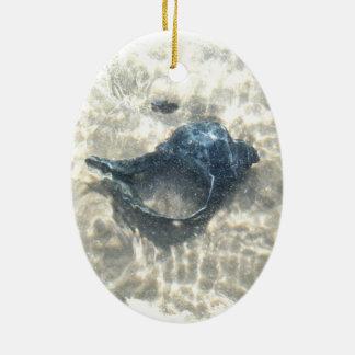 Black Seashell Ceramic Ornament