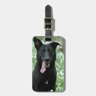 Black Shepherd Luggage Tag
