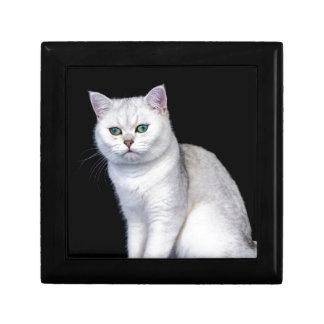 Black silver shaded British short hair cat Jewelry Box