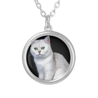 Black silver shaded British short hair cat Silver Plated Necklace