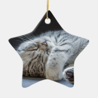 Black silver tabby kitten lying lazy ceramic star ornament