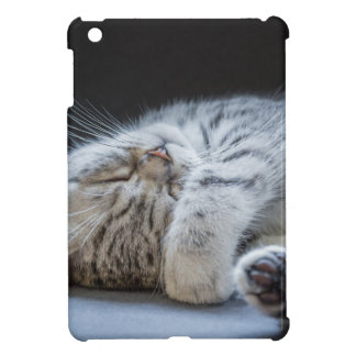 Black silver tabby kitten lying lazy iPad mini covers