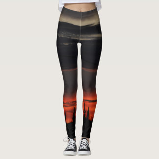 Black Sky and Cactus Women's Leggings