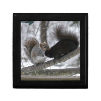 Black Squirrel Gift Box
