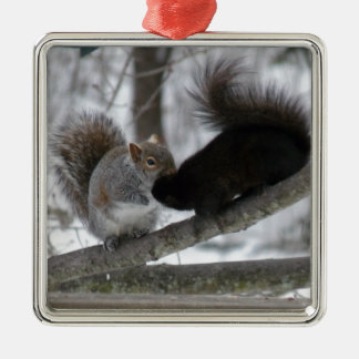 Black Squirrel Metal Ornament