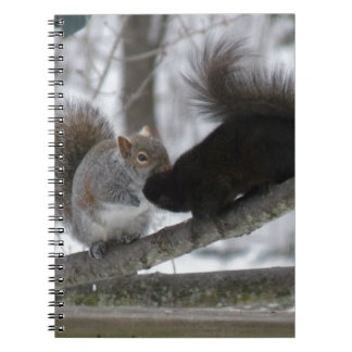 Black Squirrel Notebook
