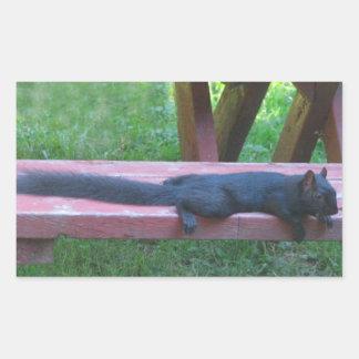 Black Squirrel Sticker