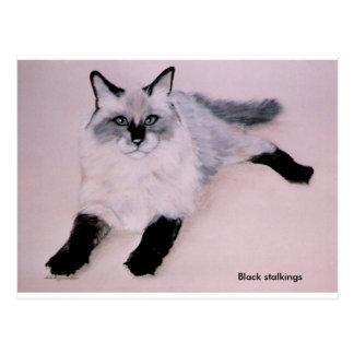 Black Stalkings                               ... Postcard