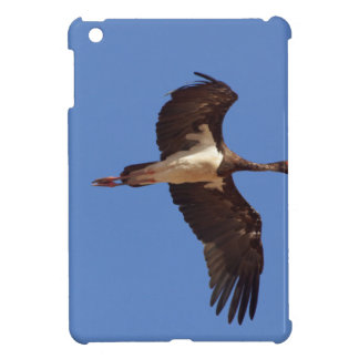 Black stork (Ciconia nigra) in flight iPad Mini Case