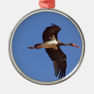 Black stork (Ciconia nigra) in flight Metal Ornament
