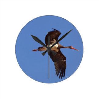 Black stork (Ciconia nigra) in flight Round Clock