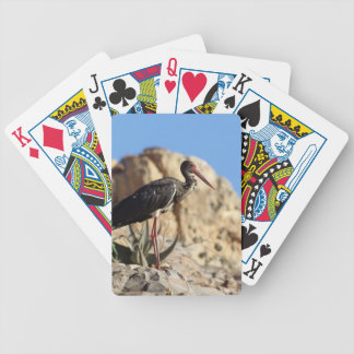 Black stork (Ciconia nigra) on a rock. Bicycle Playing Cards