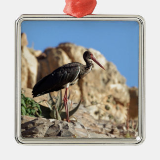 Black stork (Ciconia nigra) on a rock. Metal Ornament