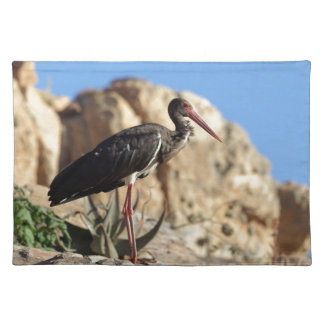 Black stork (Ciconia nigra) on a rock. Placemat