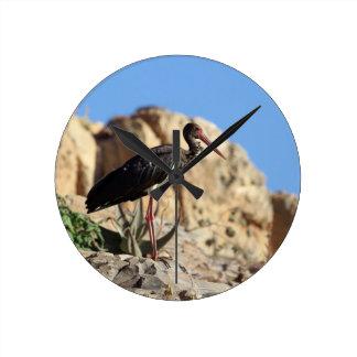 Black stork (Ciconia nigra) on a rock. Round Clock