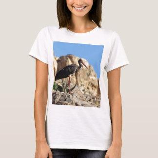 Black stork (Ciconia nigra) on a rock. T-Shirt