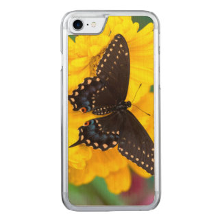 Black Swallowtail butterfly Carved iPhone 8/7 Case