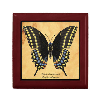 Black Swallowtail Butterfly Gift Box