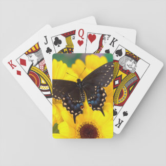Black Swallowtail butterfly Poker Deck