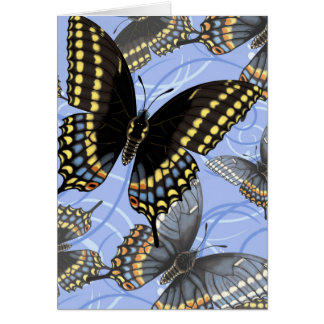 Black Swallowtail Butterfly Swirls Card