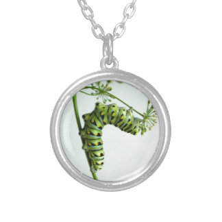 Black Swallowtail Caterpillar eating parsley Silver Plated Necklace