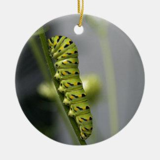 Black swallowtail caterpillar (parsleyworm) on Dil Ceramic Ornament