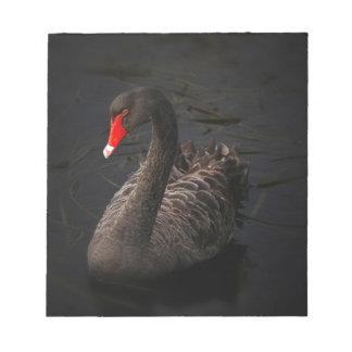 Black-swan-1229 Notepads