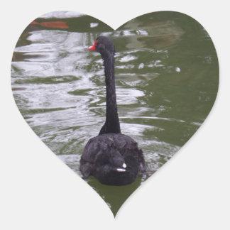 Black Swan Heart Sticker