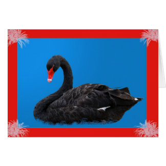 Black Swan in Blue Card